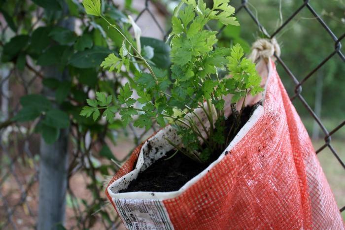 Herb or Flower Sack. Burlap Hanging Herb Pocket 06