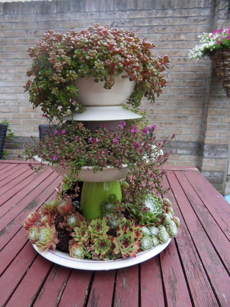 Zelfgemaakte etagère, gedecoreerd met vetplantjes voor buiten. Staat erg leuk op de tuintafel!