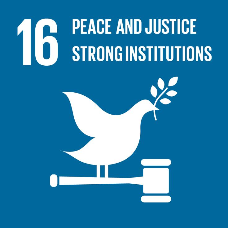 Peace in the country will be achieved when institutions are created and become stronger, with more power within the population and internationally. Once the institutions are better created, will be the moment in which peace will reach the country and its inhabitants