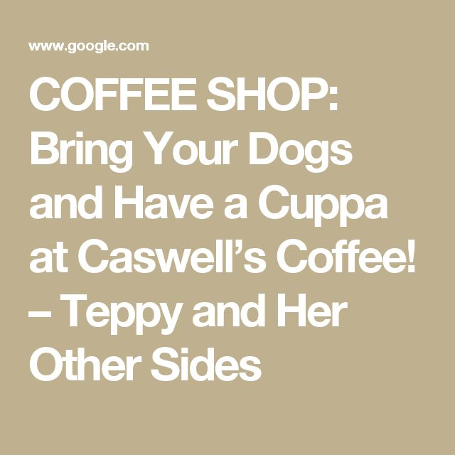 COFFEE SHOP: Bring Your Dogs and Have a Cuppa at Caswell's Coffee! – Teppy and Her Other Sides