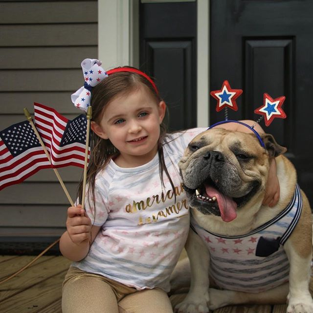 WEBSTA @ kcraig923 - Erin and Harvey did a little Memorial Day celebrating today.  Let us not forget the meaning of this holiday and take time to remember all those who have made the ultimate sacrifice defending our freedom #erinandharvey #memorialdayweekend #bffs #blessed #bulldog #besties #bulldogs #bulldogstuffbesties #bulldogsofinstagram #igers #igbulldogs_nj #igbulldogs_nyc_area #igbulldogs_worldwide #picoftheday #photooftheday #abc7ny #nbc4ny #fox5ny #targetstyle #mytargetstyle…