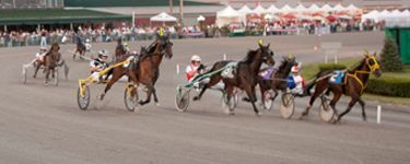 Come watch LIVE Harness Racing 5 nights a week here at Yonkers Raceway at Empire City Casino!