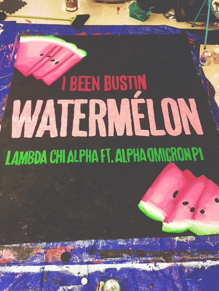 university of arkansas - alpha omicron pi (aoii) - sorority banner - lambda chi alpha watermelon bust banner - beyonce