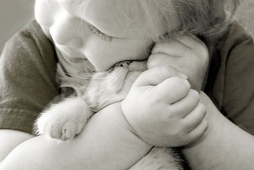 Toddler + kitten = cuteness overload.
