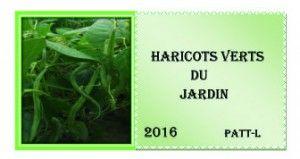 Étiquette pour haricots vert  2016.
