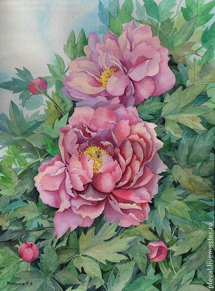 Картина акварелью Розовые пионы - сиреневый,пион,цветы,акварель,графика