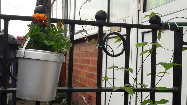Upcycled yoghurt buckets painted silver with acrylic coating, make great front yard plant pots on the fence