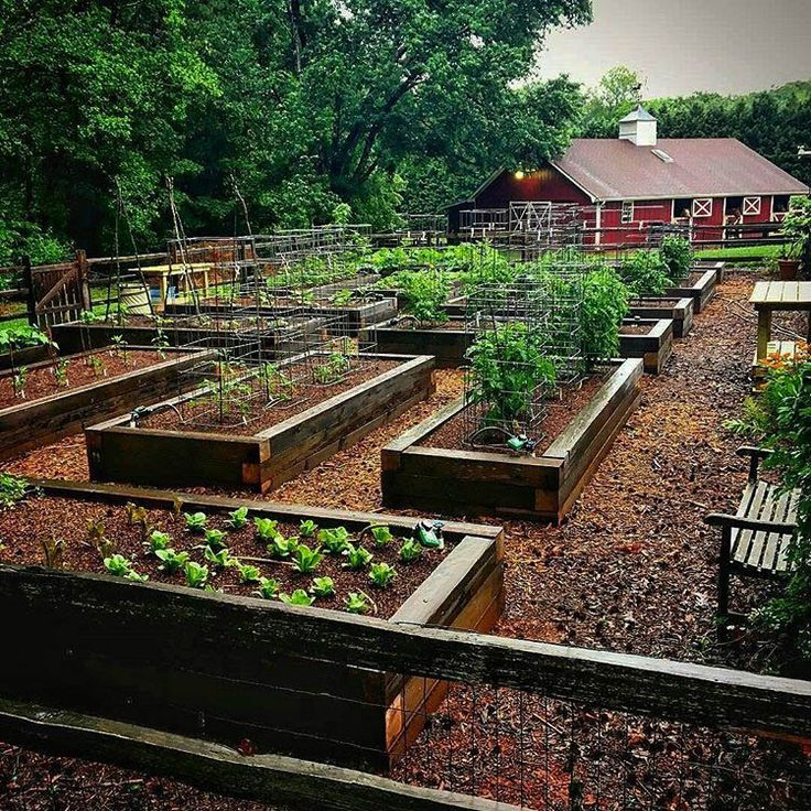 20 Raised Bed Garden Designs And Beautiful Backyard: Marvelous Diy L Shaped Raised Garden Bed That Look