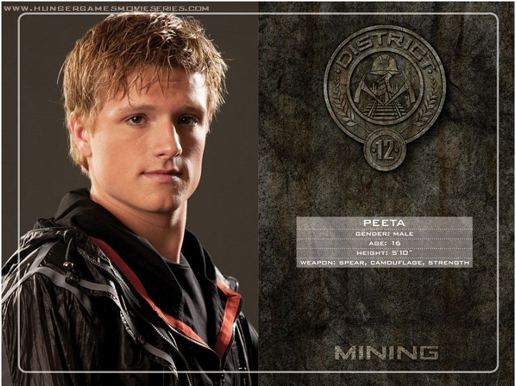 Image result for peeta mellark hunger games tribute