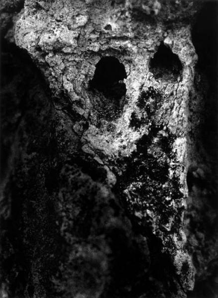 Galerie VU - Christer Strömholm series Golgotha XIX, Le Père