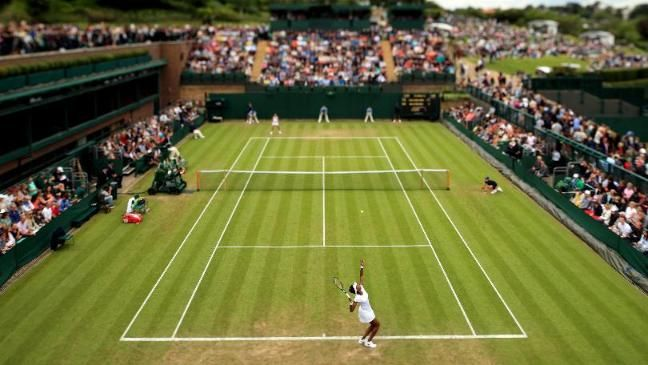Image Result For Wimbledon Grass Courts