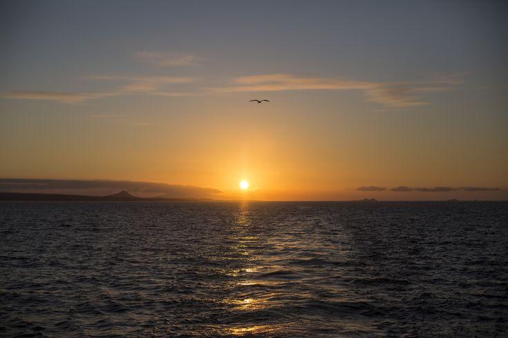Complete Galápagos - Estrella del Mar - G Adventures - #travel #gadventures #jessicattand #SouthAmerica #tour #grouptour #escortedtour #seetheworld #culture #bucketlist #adventure #explore