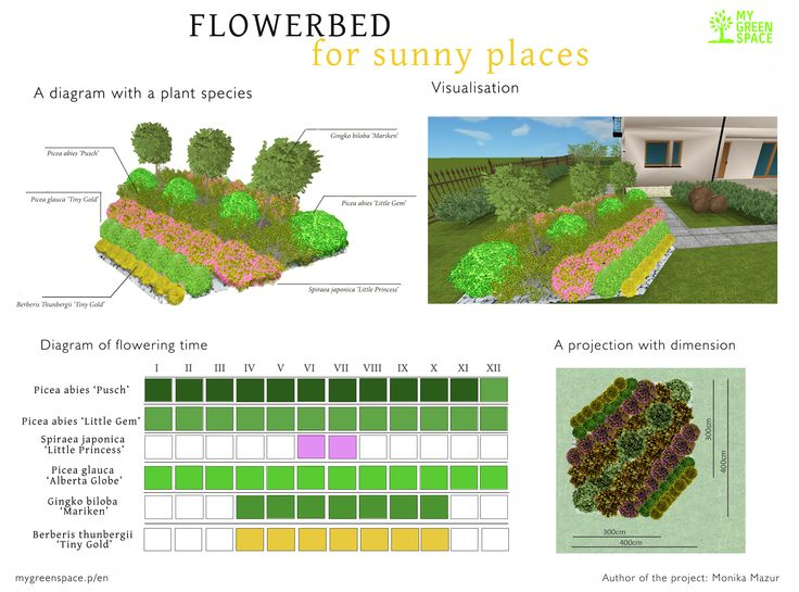 Flowerbed for sunny places. Make your own project of flowerbed with MyGreenSpace mygreenspace.pl/en