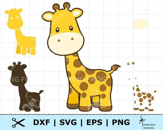 Pin On Baby Giraffe