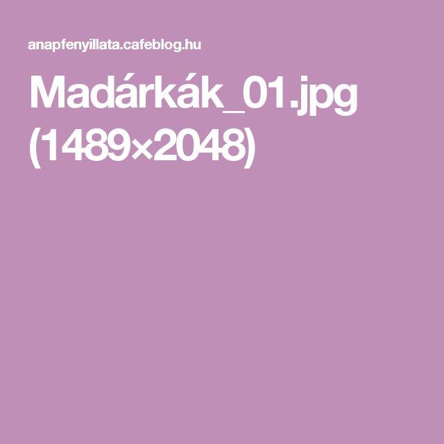 Madárkák_01.jpg (1489×2048)