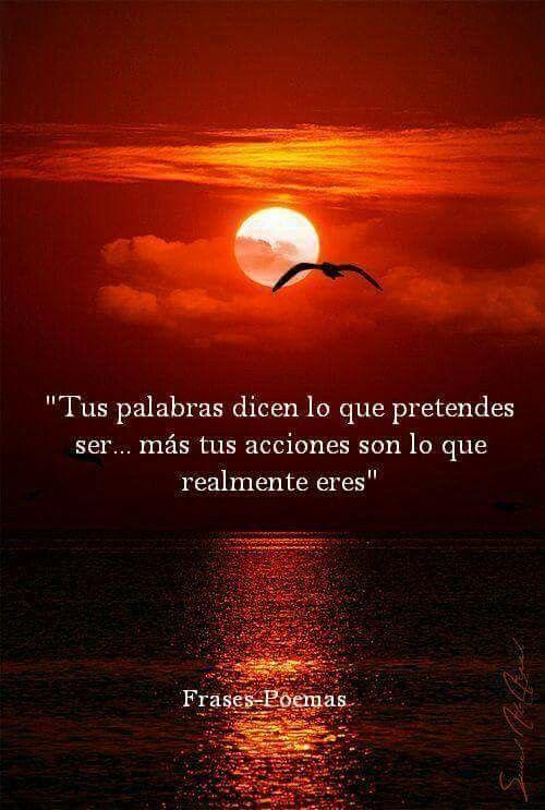 Abre tus ojos mi amor vid20160407wa0090 - 2 6