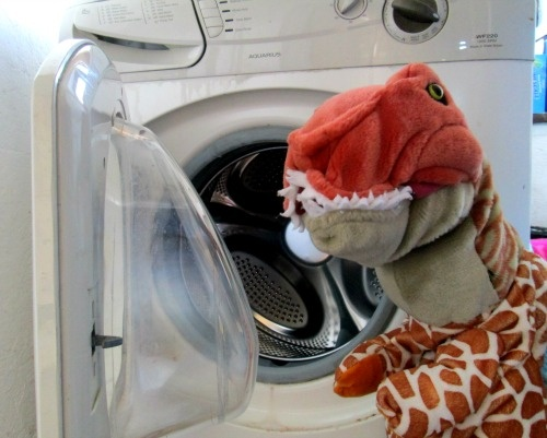 Irish Proverb : A turkey never voted early for Christmas    and rexy definitely doesn't want to be put in the washing machine    Little Gem Puppets