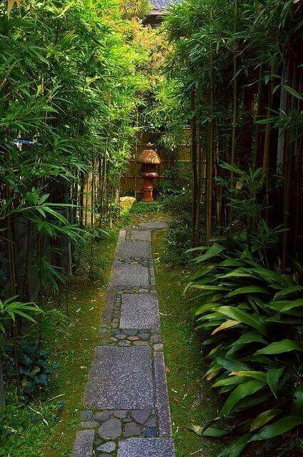Japanese garden path