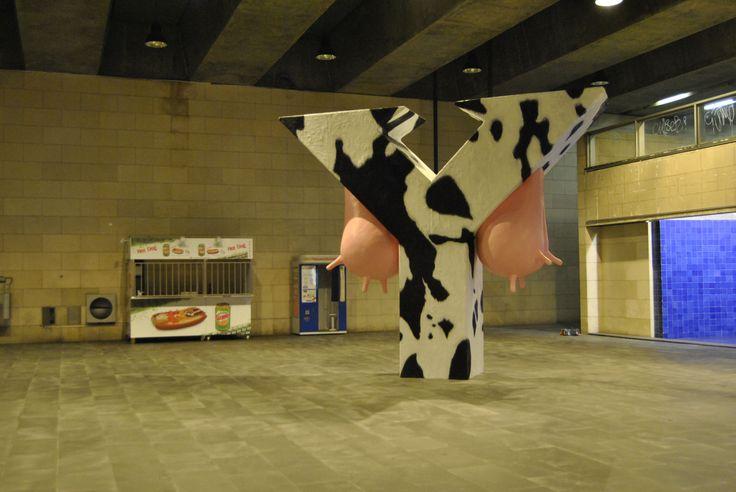 vaca_4