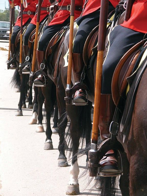 rcmp musical ride - Google Search Infocus Magazine