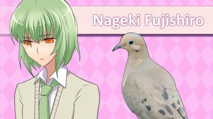 'Hatoful Boyfriend', A Dating Sim Video Game Set in a High School for Pigeons; via lsquid
