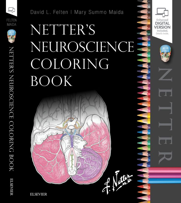Interview with Dr. David Felten of UMHS About Netter's Neuroscience Coloring Book | UMHS Endeavour