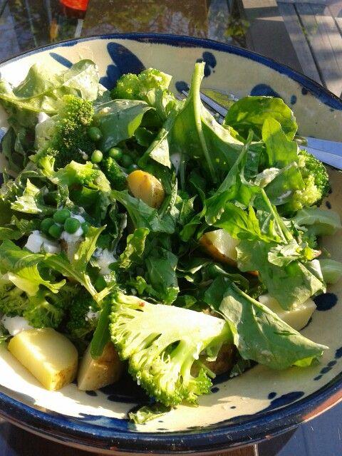 Lauwwarme broccoli salade met geitenkaas  Halve struik broccoli 2 min gekookt, paar handjes rucola en doperwtjes (kort geblancheerd), halve rode ui in ringen, paar gekookte aardappelen lauwwarm,  verse munt/citroenmelisse/oregano, verbrokkelde geitenkaas, zelfgemaakte honing/mosterddressing