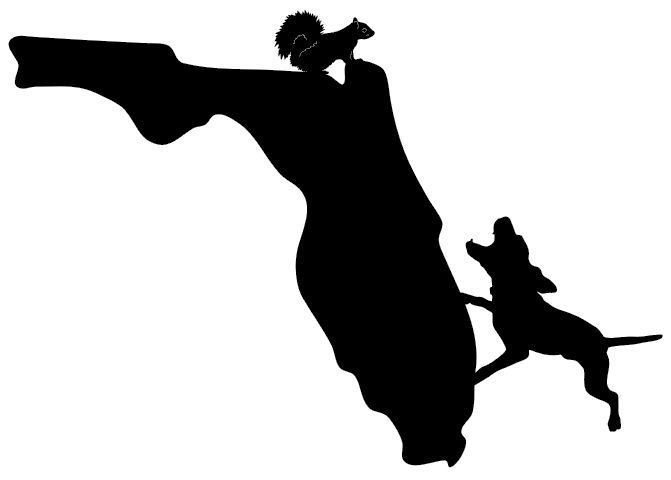 Squirrel Hunting Florida State Decal Outdoor Hunting Sticker