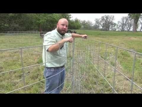 DIY Figure-C Feral Hog Trap