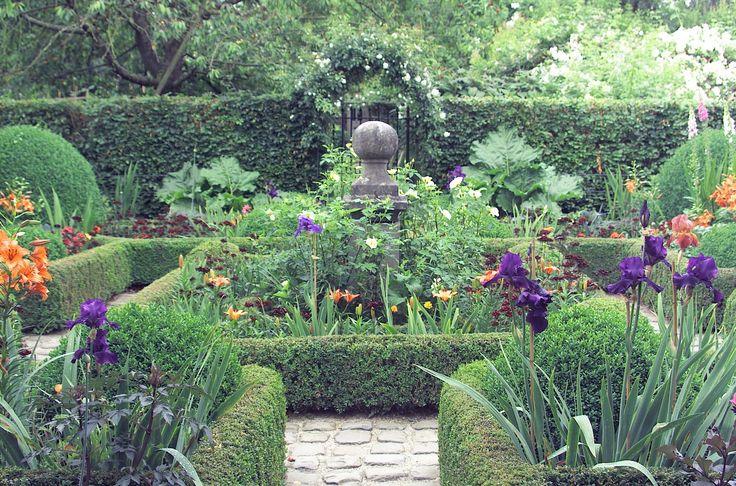 Deze buxustuin heeft veel mooie kleuren dankzij o.a. daglelies, vingerhoedkruit en irissen.