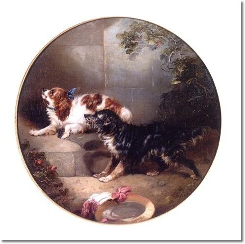 81 best Cavalier King Charles spaniel images on Pinterest