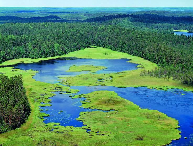 Seitseminen National Park. Lentokuva Vallas Oy