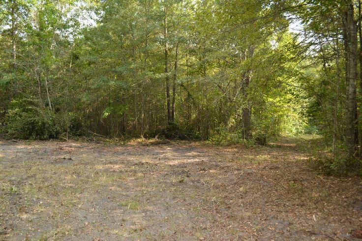 Morris Bing Rd; 20 acres; 19 miles from Edisto Beach!!!