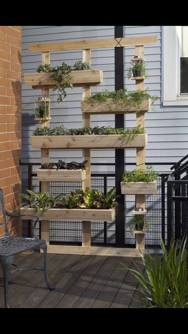 Living garden/herb wall