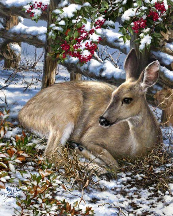 Открытки животных и природа, 80-лет юбилей