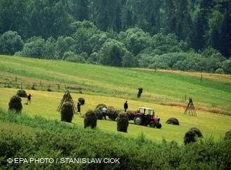 Poland's countryside can be an ideal spot to vacation