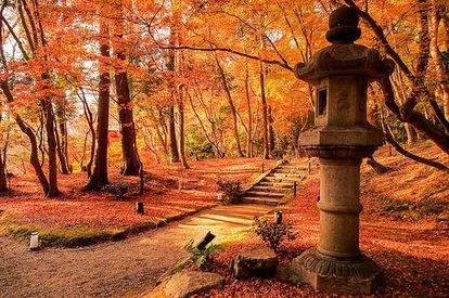 絵画のような紅葉!秋の京都「醍醐寺」の絶景は今年も見逃せない - NAVER まとめ