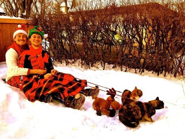 These two hanging out with Rudolf. | 21 Animals Who Are Totally Nailing This Whole Christmas Thing