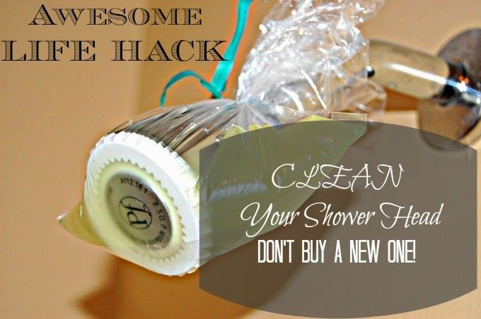 HOW-TO Clean a Shower Head the easy way! #lifehack #cleaningtip