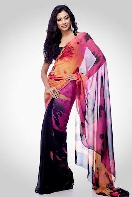 romancing the Sari - Satya Paul 2012