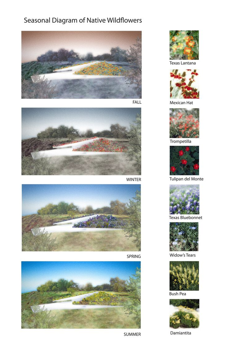 Image 24 of 40 from gallery of Edgeland House / Bercy Chen Studio. Season Diagram