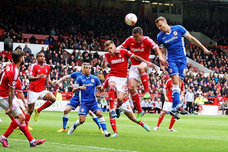 Ponturi pariuri - Cardiff City vs Nottingham Forest - Championship - Ponturi Bune