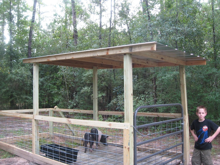 Pig Pen Example Homesteading And Gardening Pig Farming