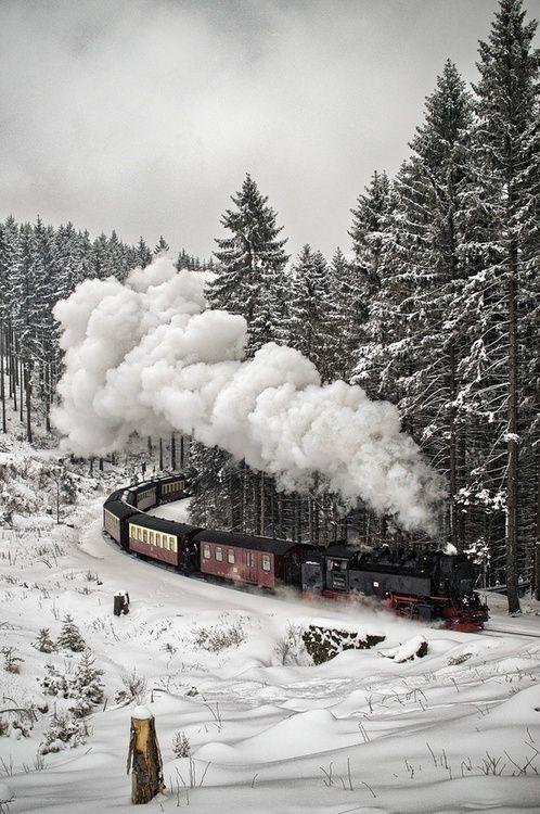 Snow Train, The Black Forest, Germany photo via bright