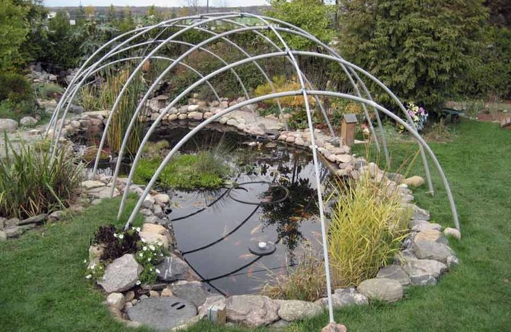 25 best ideas about koi ponds on pinterest koi fish for Koi pond temperature winter
