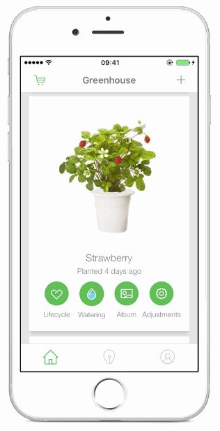 Urban gardening app for Click & Grow on Behance