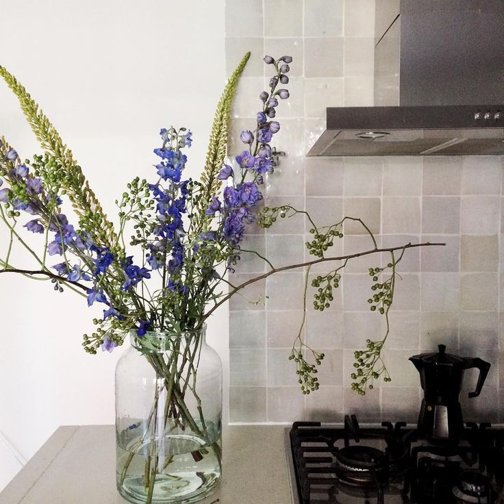 Seasonal flowers, composed With Delphiniums, Corolla ( rozenbottel ) and Erumures #corolla #delphinium #flowers #zelliges #naaldvancleopatra