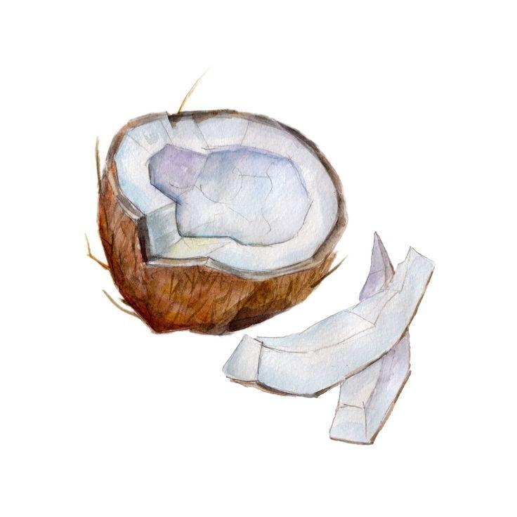 Coconut Painting Coconut Painting Kokosnuss Malerei Peinture