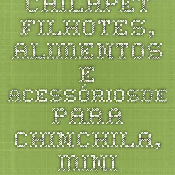 CHILAPET - Filhotes, Alimentos e Acessóriosde para Chinchila, Mini-coelhos e hamesters