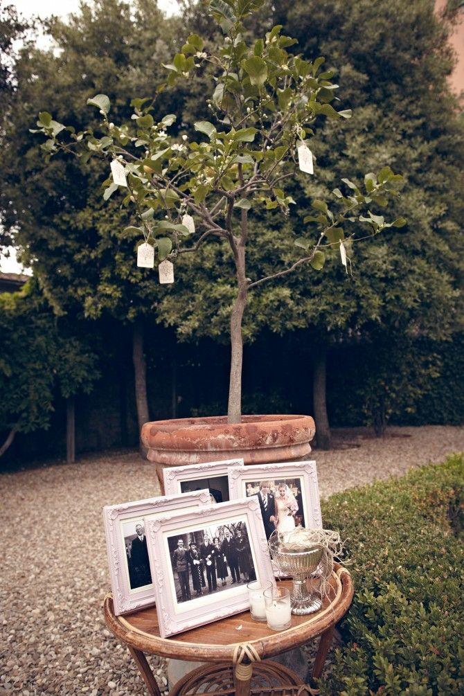 Wedding in Tuscany wishing tree